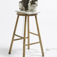 Terry Bond, Terence Bond, 'On Sleep' 2014. Taxidermy, working macbook,, stool.